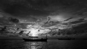 NGO Photographers Alliance