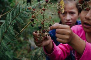 NGO Photographers Humanitarian Photography Workshops Non-Profit Ethical Storytelling Mentorship Program Courses